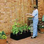 Mini Raised Bed & Crop Support Frame
