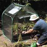 Mini Greenhouse and Raised Bed Kit