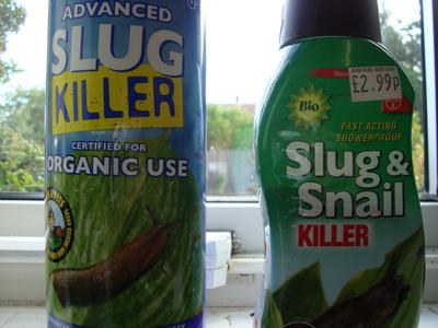 Slugs_003