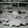 Snowman_006