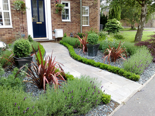 Front Garden Design Ideas Pictures Uk: Low Evergreen Path-edging : Grows On You