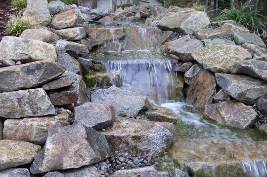 Hypertufa For Ponds Grows On You