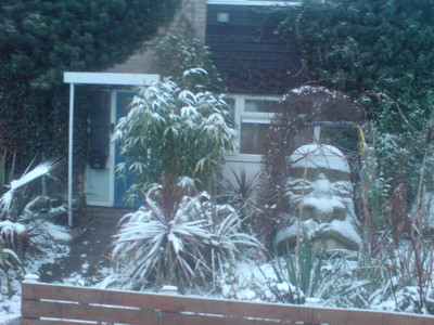 Winter_garden_jan_2009_007