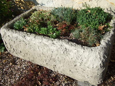 Alpine_trough