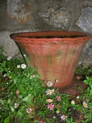 Terracotta_pot