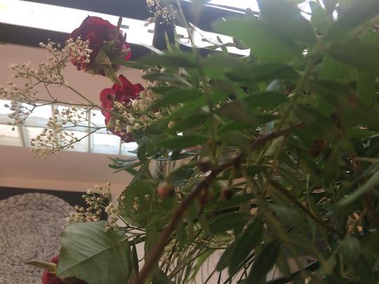 Flower_sprig_berries_query_1