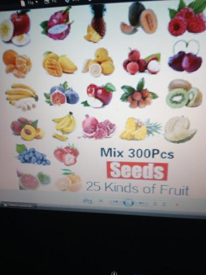 Mixed_fruit_seeds