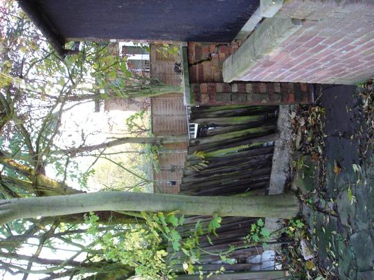 Gardenpictures1110_003