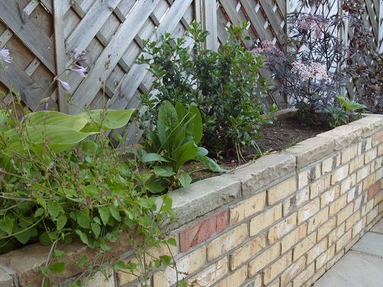 Garden_wall2