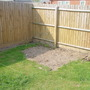 Garden_pictures_005