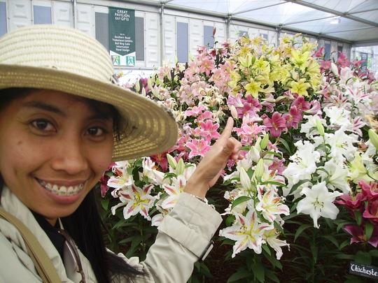 Chelsea_flower_show