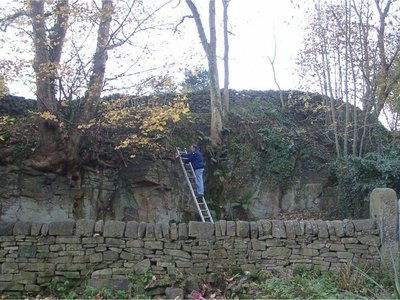 Ladder_garden