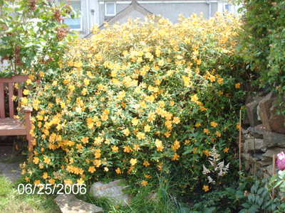 Picture_118