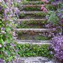 Garden_gardening_garden_steps_flowers_lilac_flowers_garden_design_and_architecture_via_pinterest