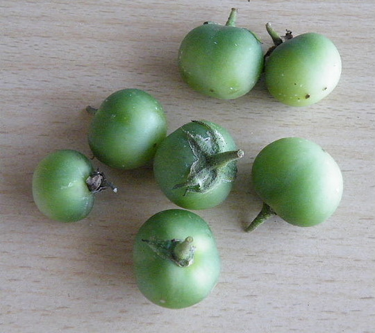 Green_potatoes_