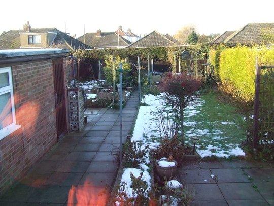 Garden_winter