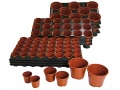 Pots & Potting