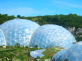 Eden Project Seeds