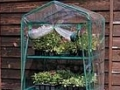 Mini Greenhouses