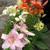flowerlover