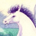 the_white_horse