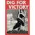diggingforvictory