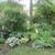 paulab_gardener