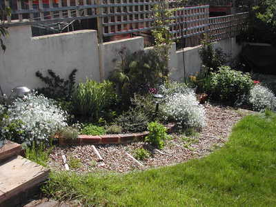 Any ideas for a sloping garden path please? : Grows on You on Downward Sloping Garden Ideas id=60411
